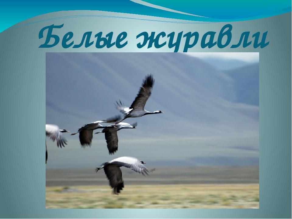 Белые журавли