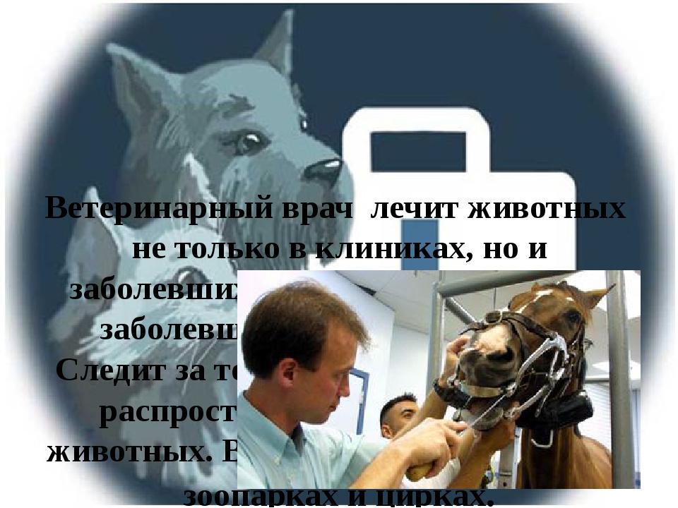 Ветеринарный врач лечит животных не только в клиниках, но и заболевших на фе...