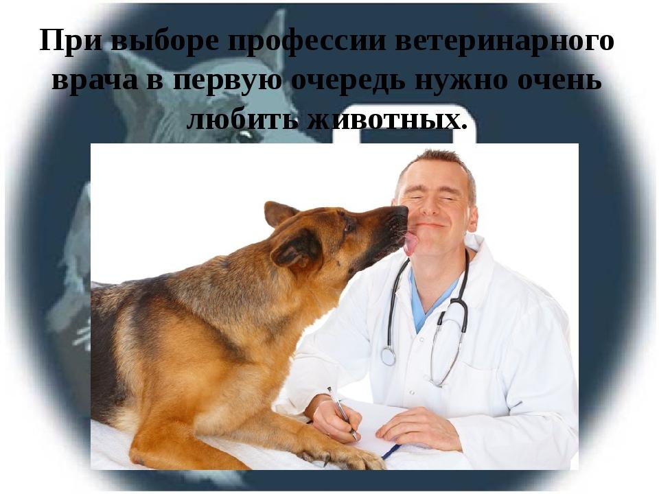При выборе профессии ветеринарного врача в первую очередь нужно очень любить...