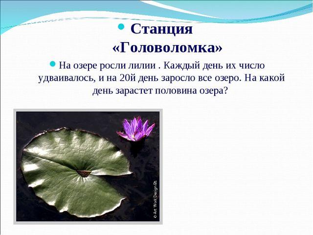 Станция «Головоломка» На озере росли лилии . Каждый день их число удваивалос...