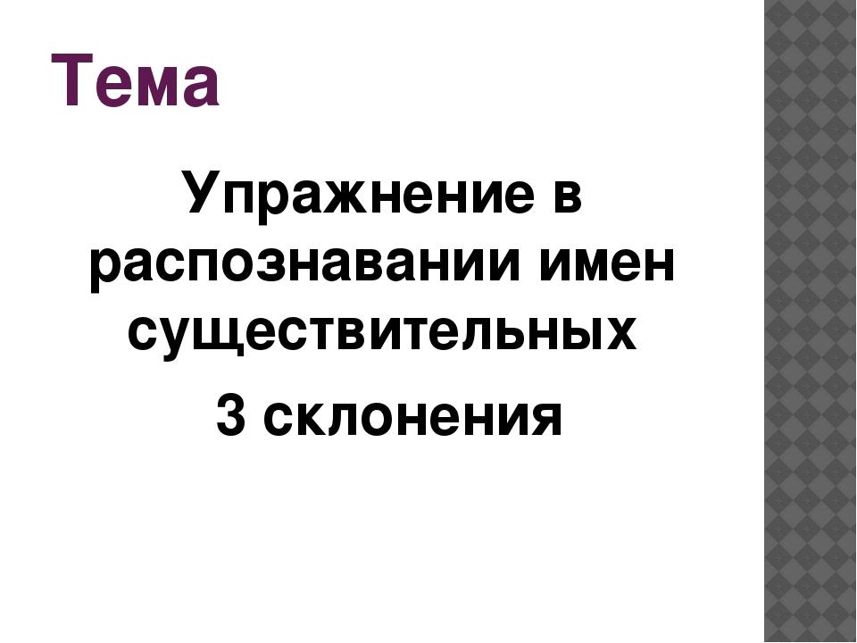 Тема Упражнение в распознавании имен существительных 3 склонения