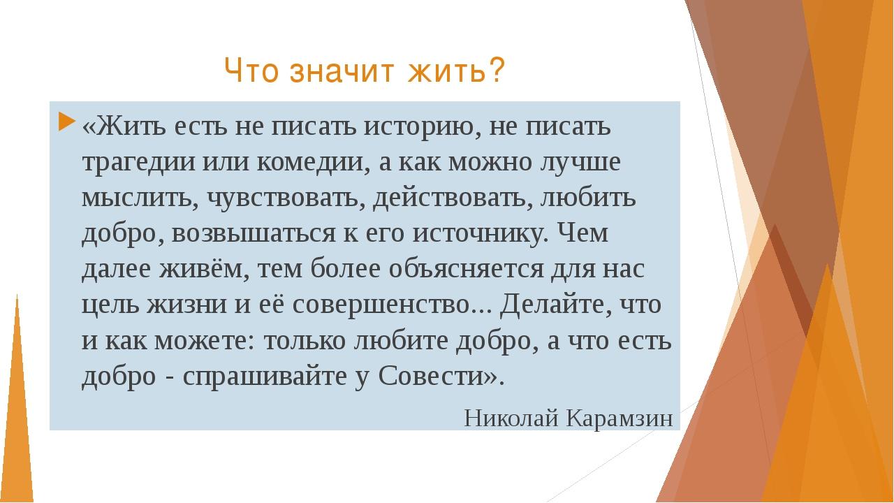 Что значит жить? «Жить есть не писать историю, не писать трагедии или комедии...
