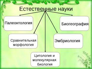 Естественные науки Цитология и молекулярная биология Сравнительная морфология