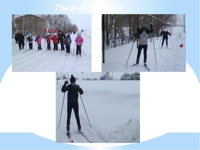 Лыжня Налима
