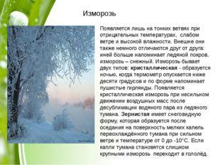 Изморозь Появляется лишь на тонких ветвях при отрицательных температурах, с