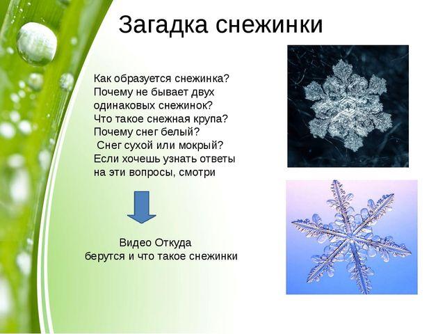 Загадка снежинки Как образуется снежинка? Почему не бывает двух одинаковых...