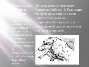 Фразеологизм «Волк в овечьей шкуре» Этот фразеологизм означает что часто злые
