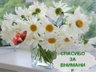 СПАСИБО ЗА ВНИМАНИЕ http://aida.ucoz.ru