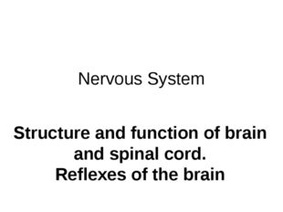 Nervous System Structure and function of brain and spinal cord. Reflexes of t