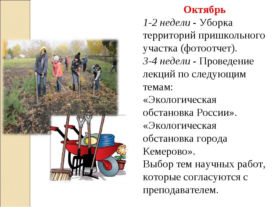 Октябрь 1-2 недели - Уборка территорий пришкольного участка (фотоотчет). 3-4...