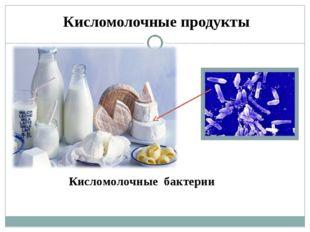 Кисломолочные продукты Кисломолочные бактерии