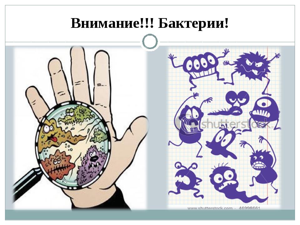 Внимание!!! Бактерии!