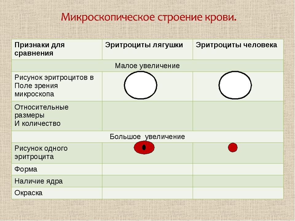 Признаки для сравненияЭритроциты лягушкиЭритроциты человека Малое увеличени...