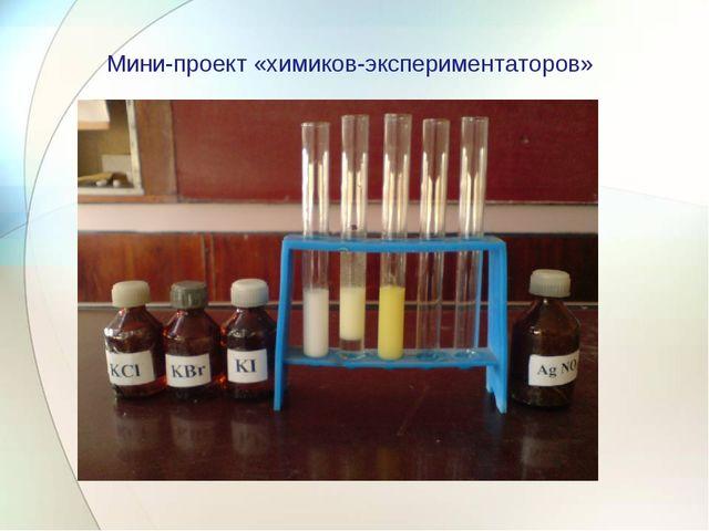 Мини-проект «химиков-экспериментаторов»