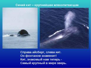 Справа айсберг, слева кит. Он фонтаном знаменит! Кит, знакомый нам теперь -