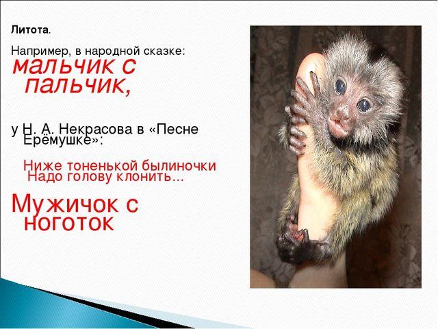 Литота. Например, в народной сказке: мальчик с пальчик, у Н. А. Некрасова в «...