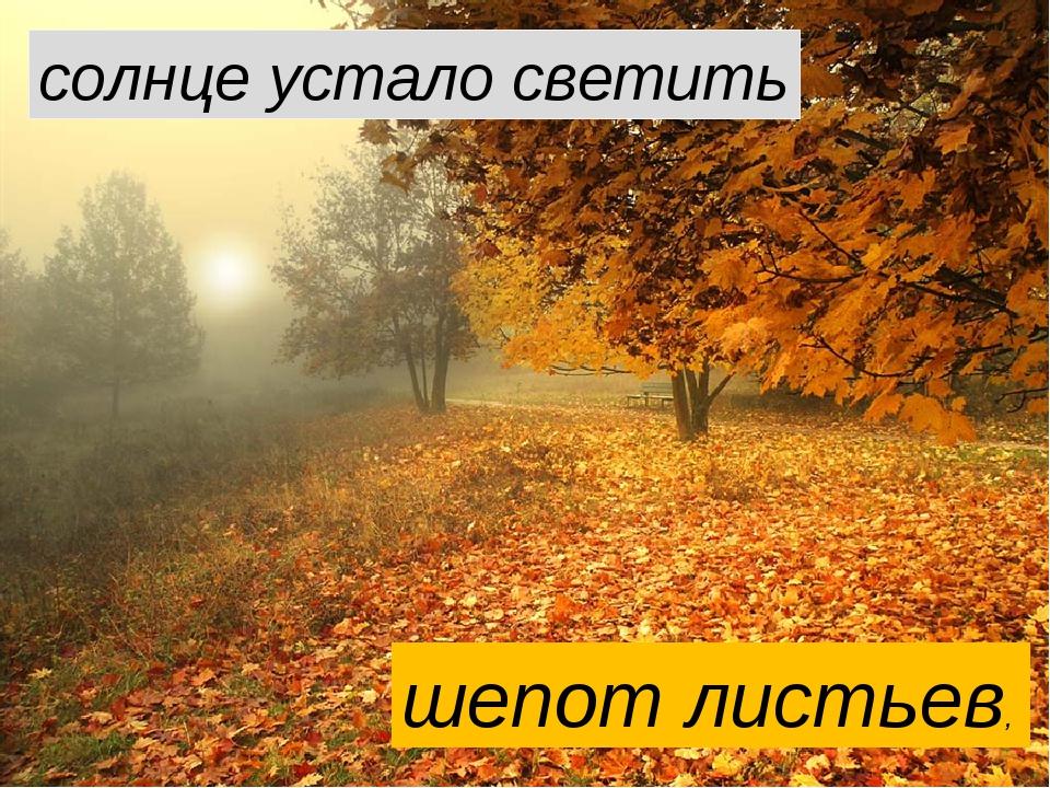 шепот листьев, солнце устало светить