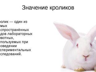 Значение кроликов Кролик— один из самых распространённых видов лабораторных