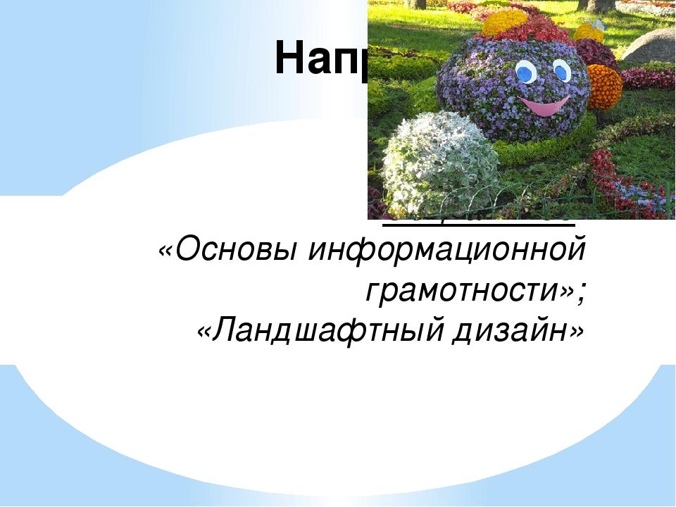 Направления: Социальное: «Основы информационной грамотности»; «Ландшафтный д...