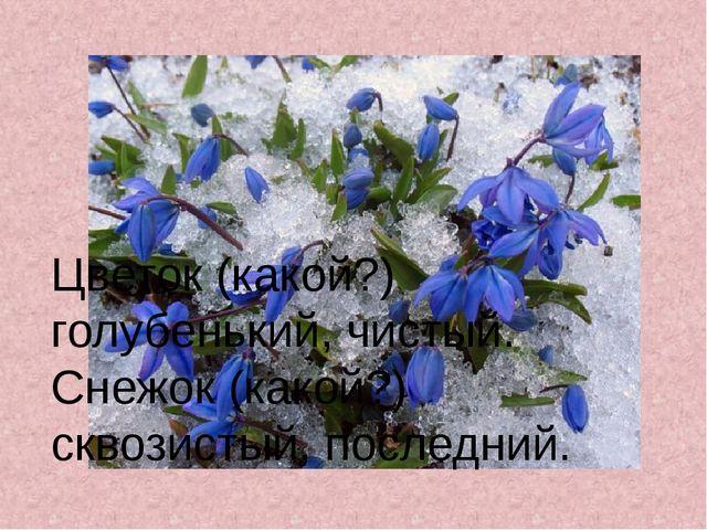 Цветок (какой?) голубенький, чистый. Снежок (какой?) сквозистый, последний.