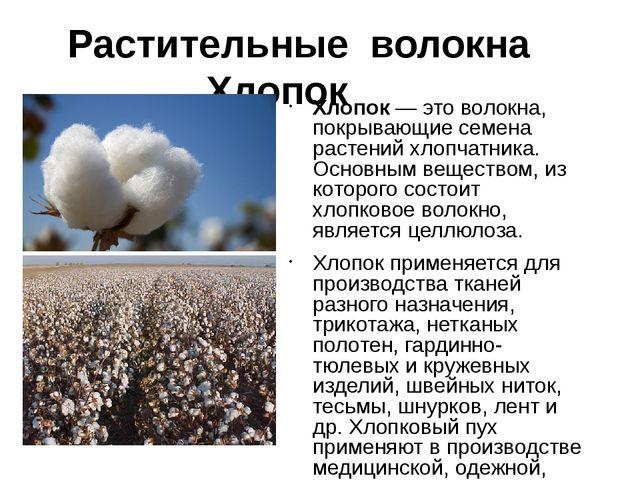 Растительные волокна Лен Лен —однолетнее травянистое растение, имеет две ра...