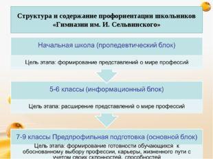 Структура и содержание профориентации школьников «Гимназии им. И. Сельвинско
