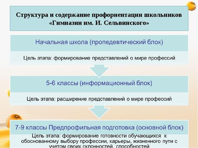 Структура и содержание профориентации школьников «Гимназии им. И. Сельвинско...