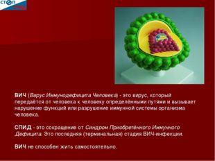 ВИЧ (Вирус Иммунодефицита Человека) - это вирус, который передаётся от челов