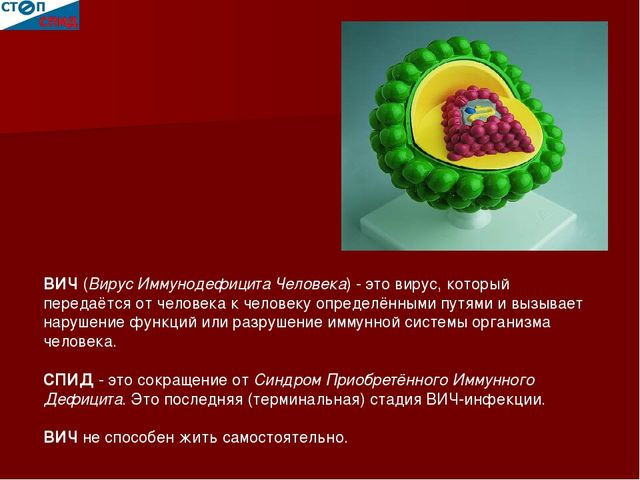 ВИЧ (Вирус Иммунодефицита Человека) - это вирус, который передаётся от челов...