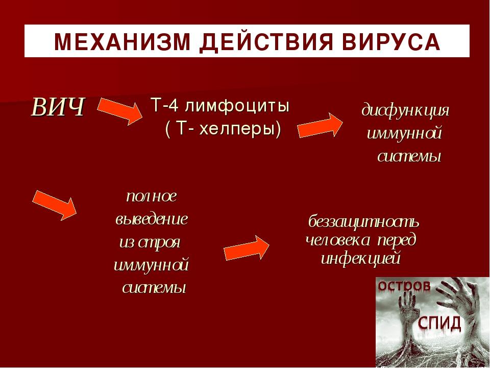 беззащитность человека перед инфекцией МЕХАНИЗМ ДЕЙСТВИЯ ВИРУСА ВИЧ дисфункц...