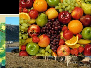 Виноделие Шерсть Овощеводство