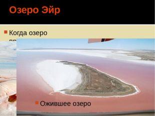 Озеро Эйр Когда озеро превращается в солончак Ожившее озеро