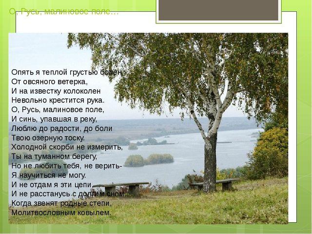 О, Русь, малиновое поле… Опять я теплой грустью болен От овсяного ветерка, И...