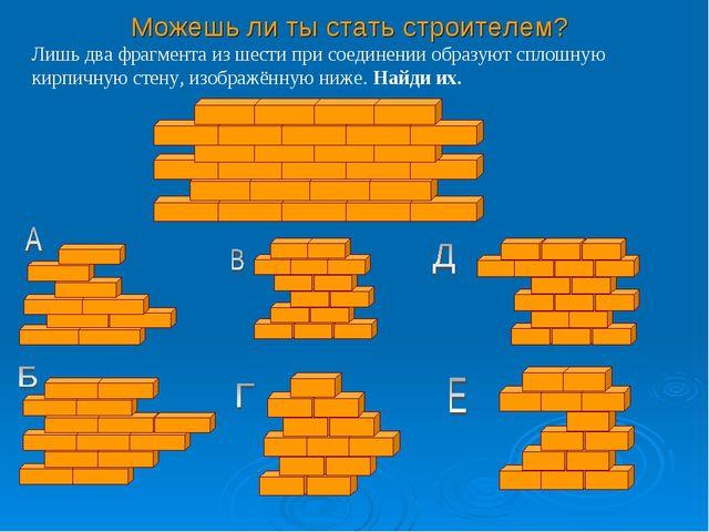 Можешь ли ты стать строителем? Лишь два фрагмента из шести при соединении обр...