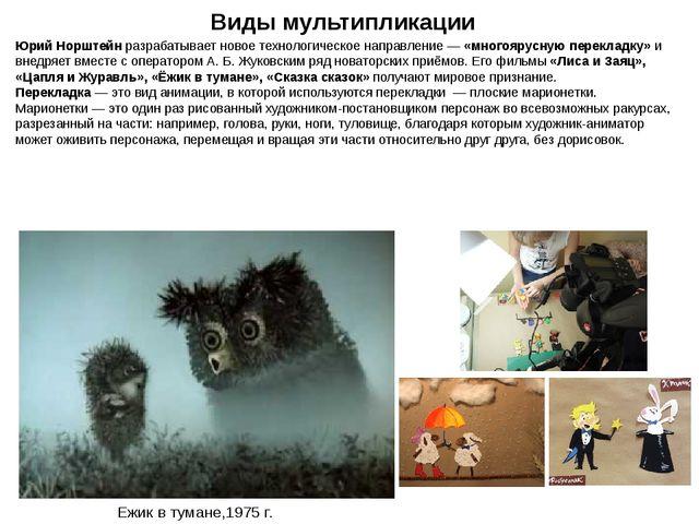 Юрий Норштейн разрабатывает новое технологическое направление— «многоярусную...