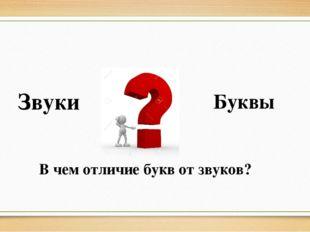 Звуки Буквы В чем отличие букв от звуков?
