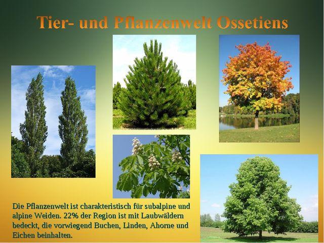 Die Pflanzenwelt ist charakteristisch für subalpine und alpine Weiden. 22% de...