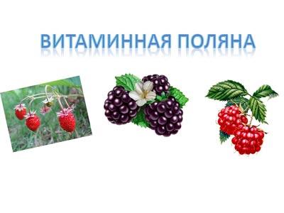 hello_html_m1e8806d.jpg