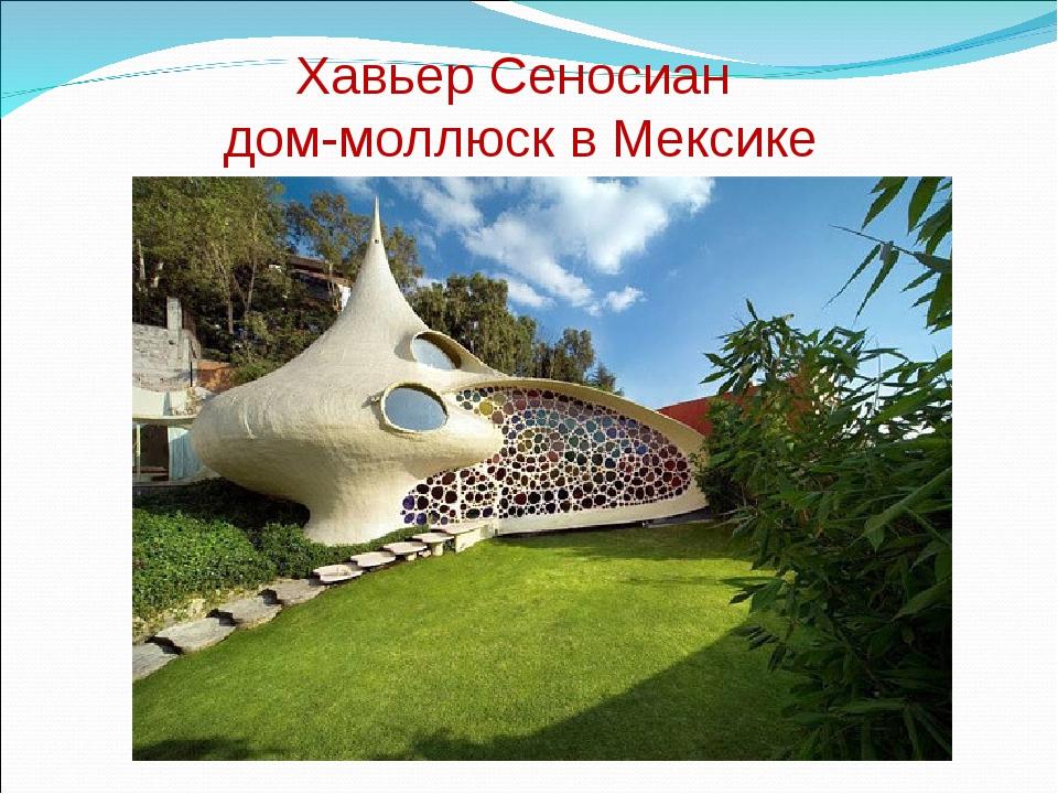 Хавьер Сеносиан дом-моллюск в Мексике