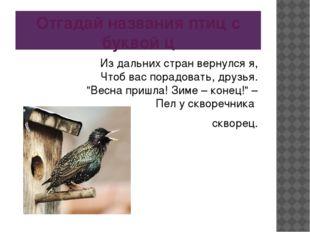 Отгадай названия птиц с буквой ц Из дальних стран вернулся я, Чтоб вас порадо
