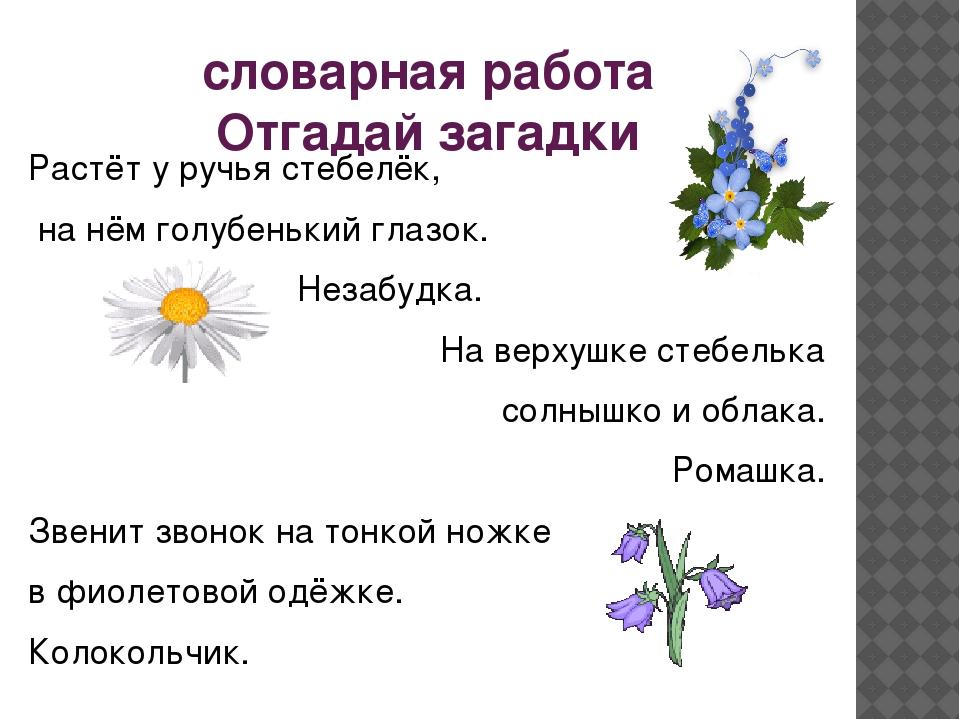 словарная работа Отгадай загадки Растёт у ручья стебелёк, на нём голубенький...