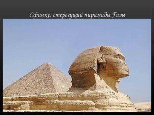 Сфинкс, стерегущий пирамиды Гизы