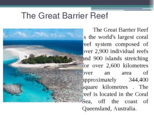 The Great Barrier Reef The Great Barrier Reef is the world's largest coral r
