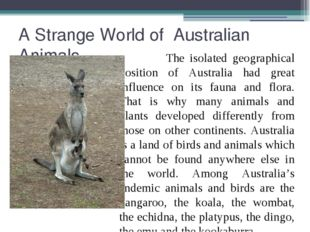 A Strange World of Australian Animals The isolated geographical position of A