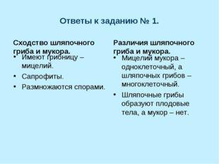 Ответы к заданию № 1. Сходство шляпочного гриба и мукора. Имеют грибницу – ми