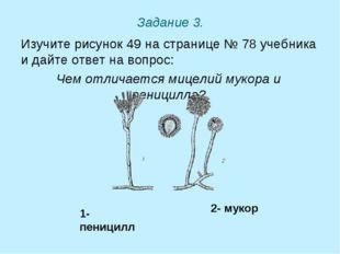 Задание 3. Изучите рисунок 49 на странице № 78 учебника и дайте ответ на вопр