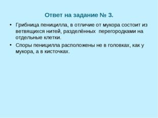 Ответ на задание № 3. Грибница пеницилла, в отличие от мукора состоит из ветв