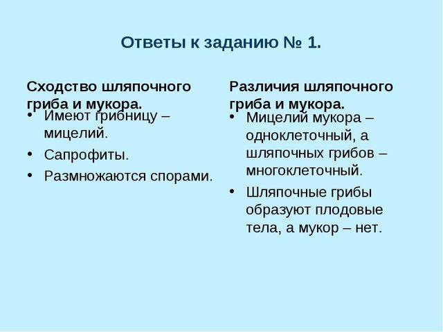 Ответы к заданию № 1. Сходство шляпочного гриба и мукора. Имеют грибницу – ми...