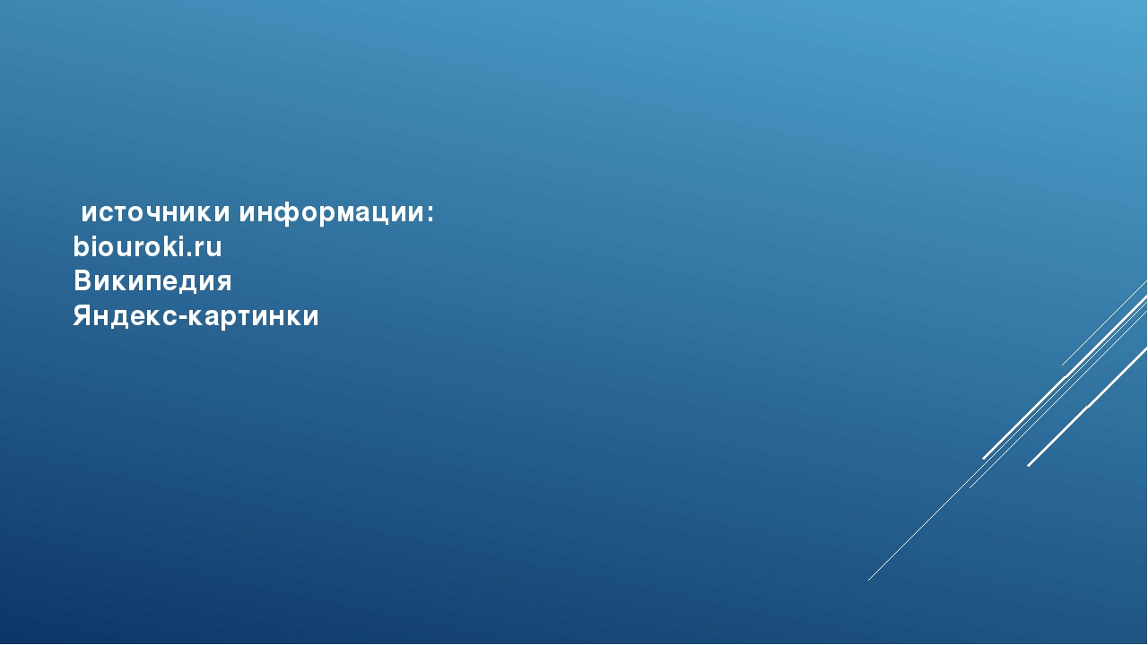 источники информации: biouroki.ru Википедия Яндекс-картинки