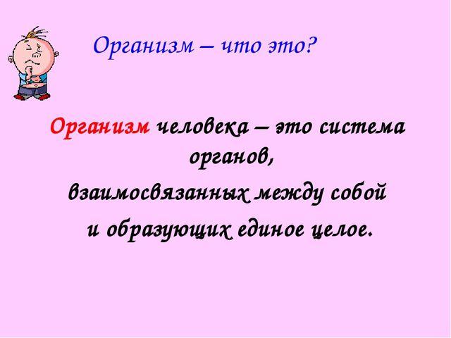 Организм – что это? Организм человека – это система органов, взаимосвязанных...